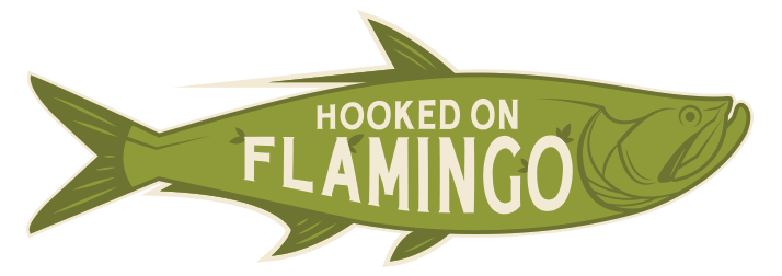 Hooked On Flamingo